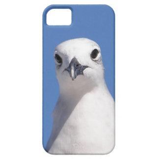 Le veo caso del iPhone 5 iPhone 5 Funda