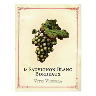 Le Vin Blanc Postcard
