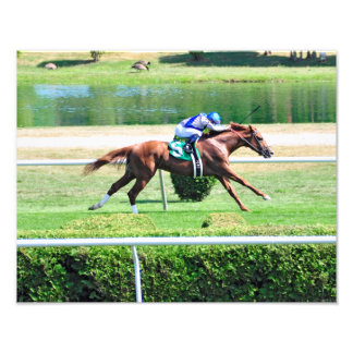 Lea - Stakes Winning Chestnut Colt Photo Print