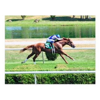 Lea - Stakes Winning Chestnut Colt Postcard