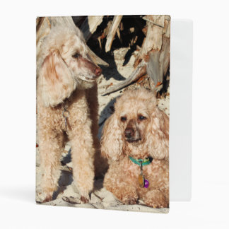 Leach - Poodles - Romeo Remy Mini Binder