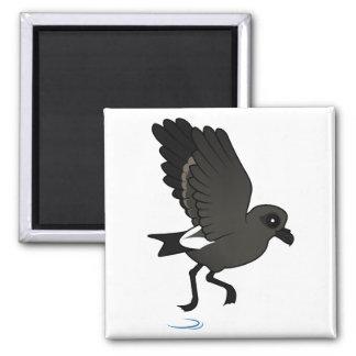 Leach's Storm Petrel (flutter) 2 Inch Square Magnet