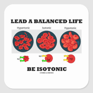 Lead A Balanced Life Be Isotonic Osmolytic Square Sticker