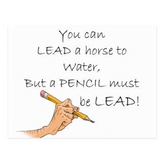 Lead a horse to water... postcard