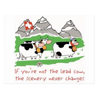 Lead Cow Postcard