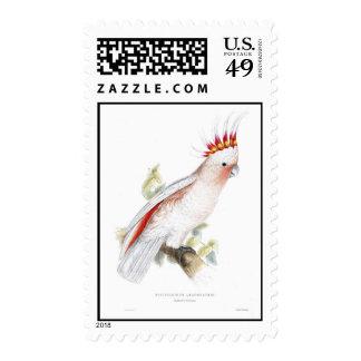 Leadbeater's cockatoo postage