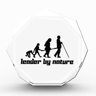 Leader by Nature Award