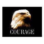 Leadership Courage Fearless Bald Eagle Postcards