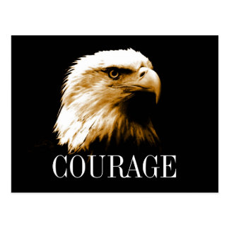 Leadership Courage Fearless Bald Eagle Postcards