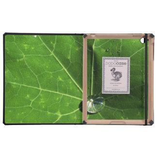 Leaf and Droplet iPad Folio Cases