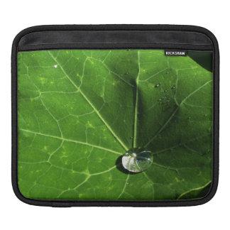 Leaf and Droplet iPad Sleeve