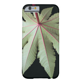 Leaf and Stem Barely There iPhone 6 Case