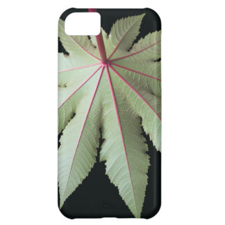 Leaf and Stem Case For iPhone 5C