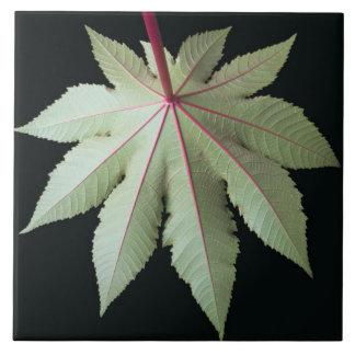 Leaf and Stem Ceramic Tile