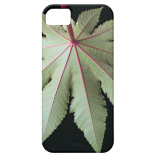 Leaf and Stem iPhone SE/5/5s Case