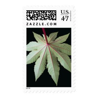 Leaf and Stem Postage