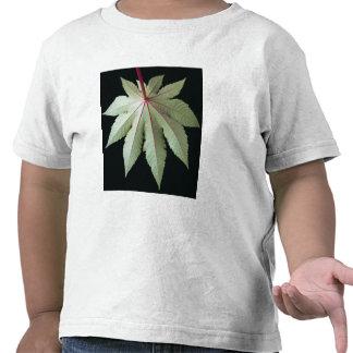 Leaf and Stem Tee Shirts