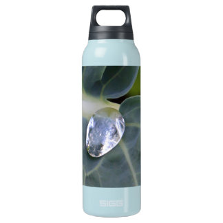 Leaf And Water Drop Insulated Water Bottle