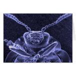 Leaf Beetle Image - Scanning Electron Microscope Cards