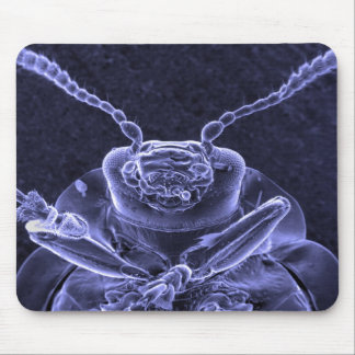Leaf Beetle Image - Scanning Electron Microscope Mouse Pad