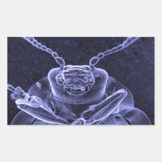 Leaf Beetle Image - Scanning Electron Microscope Rectangular Sticker