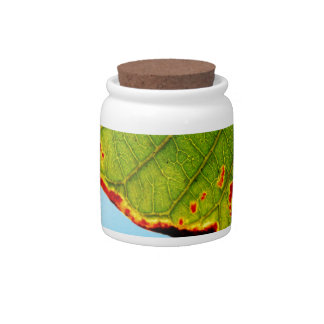 Leaf Candy Jar
