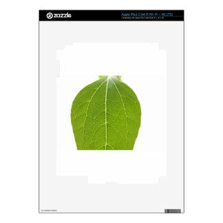 Leaf Closeup iPad 3 Decals