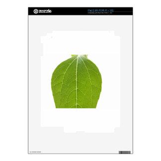 Leaf Closeup Skins For The iPad 2