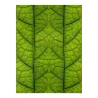 Leaf Closeup Vein Lines Photo Pattern Card