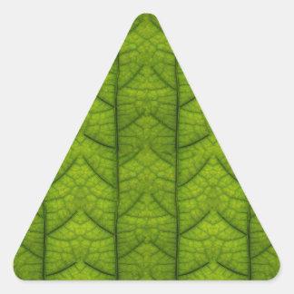 Leaf Closeup Vein Lines Photo Pattern Triangle Sticker