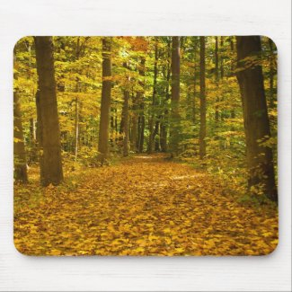 Leaf Covered Path in Fall mousepad