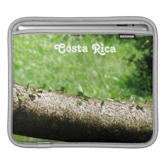 Leaf Cutter Ants in Costa Rica iPad Sleeve