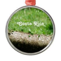 Leaf Cutter Ants in Costa Rica Metal Ornament