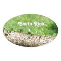 Leaf Cutter Ants in Costa Rica Oval Sticker