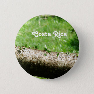 Leaf Cutter Ants in Costa Rica Pinback Button