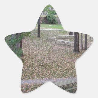 LEAF FALL STAR STICKER