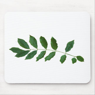 Leaf Fern Nature Party Pack Mouse Pad