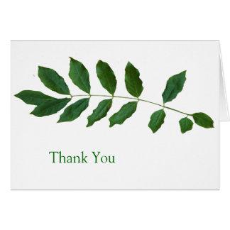 Leaf Fern Nature Thank You Card