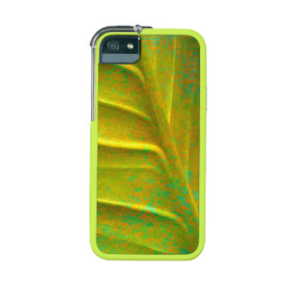 Leaf  Graft iPhone 5/5S Case, Chartreuse Yellow, C Cover For iPhone 5