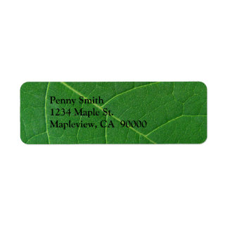 Leaf Green Close-up Photo Label