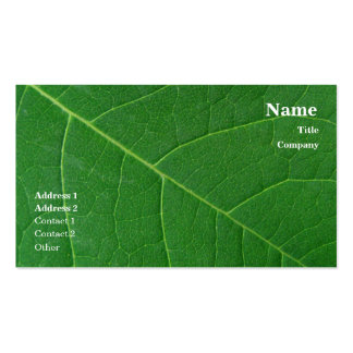 Leaf Green Close-up Photo Simple Double-Sided Standard Business Cards (Pack Of 100)