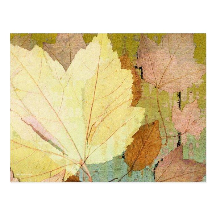 Leaf Harmony Orange Yellow Green Postcard
