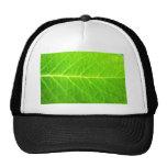 Leaf Hats