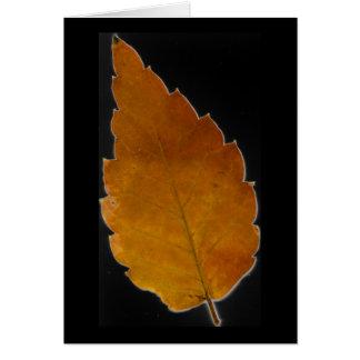 leaf III Card