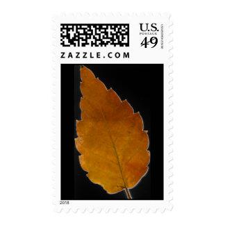 leaf III Postage Stamp
