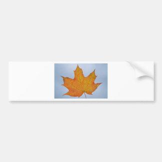 Leaf Image Bumper Sticker