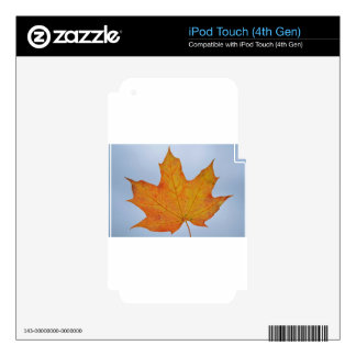 Leaf Image Decal For iPod Touch 4G