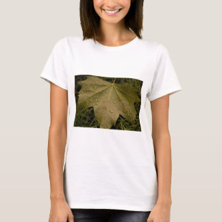 Leaf in the Dew of the Morning T-Shirt