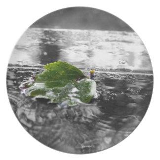 Leaf in Water Dinner Plate