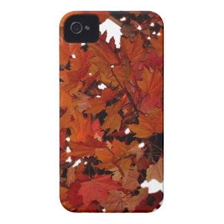 Leaf iphone 4/4s case